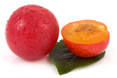 Red plums on isolated Stock Photos
