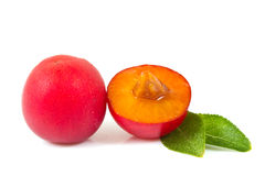 Red plums isolated Stock Image