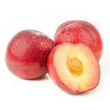 Red Plums. Red juicy plums isolated on white background Royalty Free Stock Photography