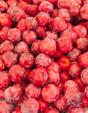 Red plums Stock Images
