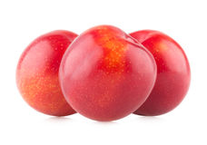 Red plums Stock Photo
