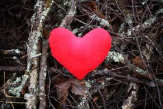 Red plush heart on branches background. stock photography