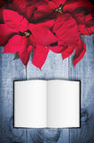 Red poinsettia Christmas flower on wooden background. Open book Royalty Free Stock Photo
