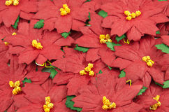 Red poinsettia Christmas frame Stock Photography