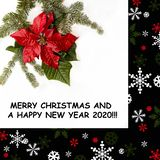 Red poinsettia and fir matural tree on white background. Frame in black with snow and christmas ornaments. Merry Christmas royalty free stock images