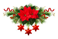 Red poinsettia flowers and Christmas decorations Stock Images