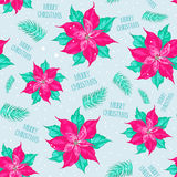 Red poinsettia pattern Stock Image