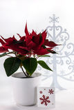 Red Poinsettia White Snowflake Tree Stock Image