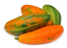 Red Pointed gourd Royalty Free Stock Images