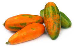 Red Pointed gourd Stock Photography