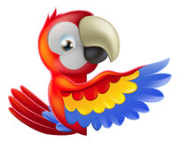 Red pointing cartoon parrot Stock Image
