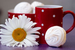 Red polka dot cup of tea Royalty Free Stock Photos