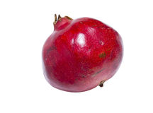 Red pomegranate Stock Image