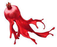 Red pomegranate isolated and Ink Splashes Stock Images