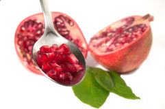 Red pomegranate seed Royalty Free Stock Photography