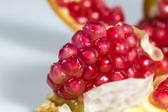 Red pomegranate seeds. On white background Royalty Free Stock Photography