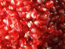 Red Pomegranate seeds Royalty Free Stock Photos