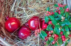 Red pomegranate on straw in a wicker basket stock photos