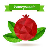 Red pomegranate and three leaves, vector illustration. Royalty Free Stock Photography