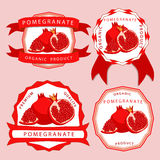 The red pomegranate Stock Image