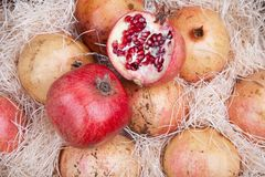 Red pomegranates in a box Stock Images