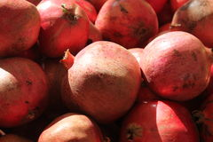 Red Pomegranates. A heap of red vinous sunny pomegranates stock photo