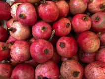 Wall of Pomegranates ready for sale at the grocery store Stock Images