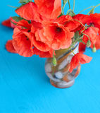 Red poppies on a background. Red poppies on a blue background Stock Photo
