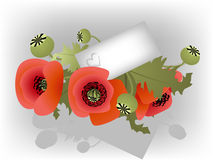 Red poppies with card for message Royalty Free Stock Images