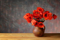 Red poppies in a ceramic vase Royalty Free Stock Image