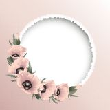 Red poppies floral round frame, vector Stock Images