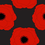Red Poppies Flower Seamless Pattern Background Stock Images
