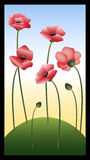 Red poppies. The red poppies growing on a green glade in the summer royalty free illustration