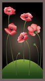 Red poppies 2. The red poppies growing on a green lawn stock illustration