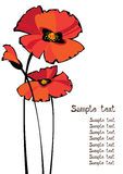 Red poppies isolated on white background stock illustration