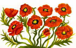 Red poppies. Many red poppies on white background, oil painting. Original size 20 x 30 sm Stock Photography