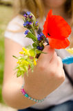 Red poppies and other field flowers bouquet stock images