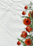 Red poppies on paper background with space for text Stock Image