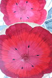Red Poppies on Paper Umbrellas Royalty Free Stock Image