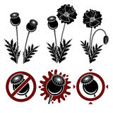 Red poppies set. Vector. Illustration Stock Photography