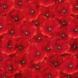 Red Poppies texturized background Stock Photography