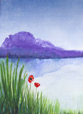 Red poppies watercolor. Scan of original watercolor painting of two red poppies growing near a lake royalty free illustration
