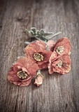 Red poppies on wooden table Royalty Free Stock Photography