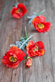 Red poppies on wooden table Stock Photos