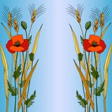 Red poppy in blue style Stock Image