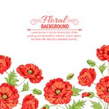Red poppy card. Royalty Free Stock Photo