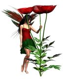 Red Poppy Fairy. Digital render of a dark haired fairy holding a red field poppy Stock Images