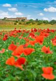 Red poppy field mediterranean landscape with rustic farm house. Romantic landscape of red poppy field with rustic old mediterranean house and blue cloudy sky stock photography