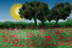 Red Poppy Field. With trees in the sun. Lots of red poppies and bushes Royalty Free Stock Photography