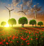 Red poppy field with trees and wind turbines Royalty Free Stock Photo